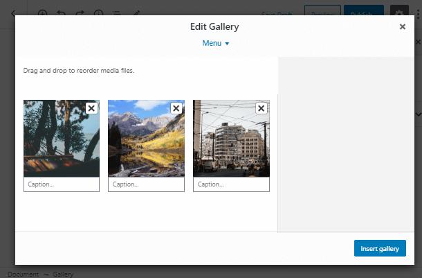 edit gallery
